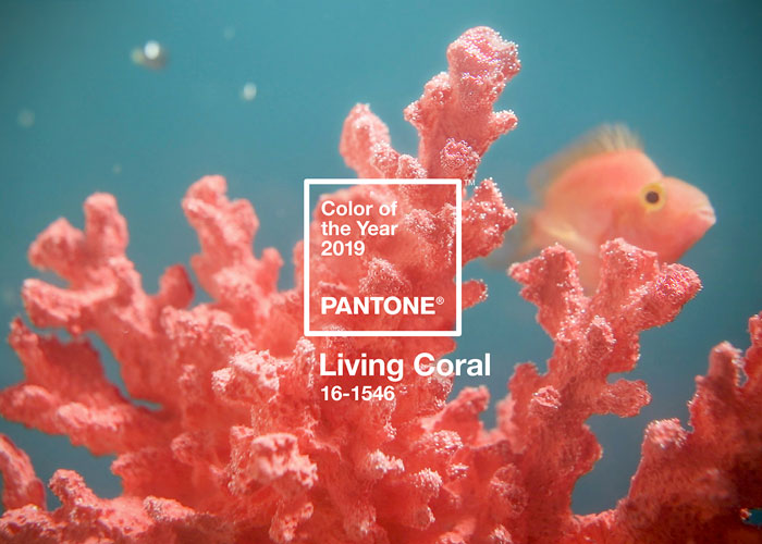 cor-do-ano-pantone-2019-living-coral-blog-decortiles